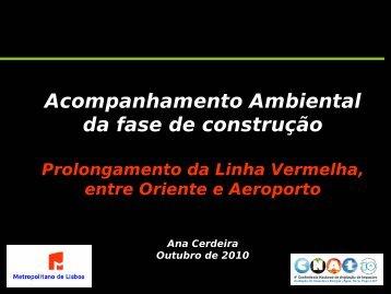 Acompanhamento Ambiental da fase de construção - APAI