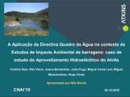 A Aplicação da Directiva Quadro da Água no contexto de ... - APAI