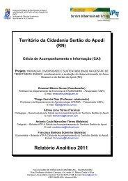 Relatório Analítico 2011