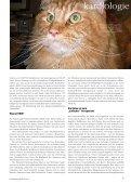 Herzpatient Katze - Dr. Ralf Tobias - Seite 2