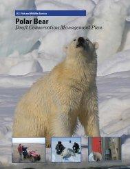 Polar Bear Conservation Management Plan