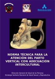 norma técnica para la atención del parto vertical