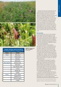 A win-win for legume mixtures - Page 2