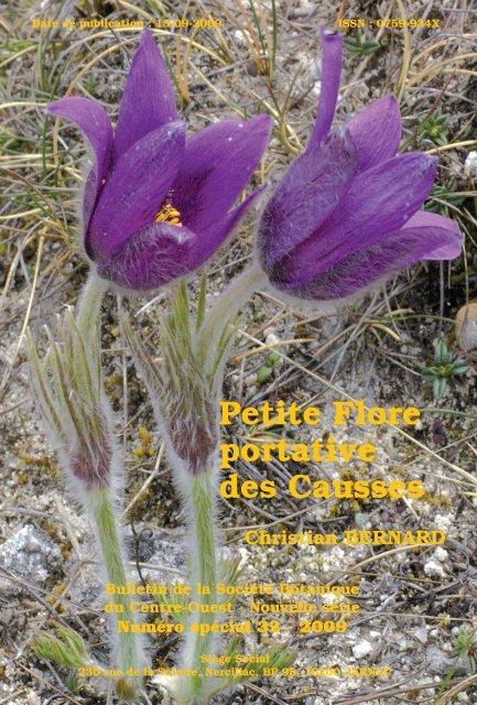 Basse Blanc Mur Poivre micranthum chloroticum-Sedum album