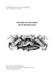 Korrektur der Korrektion durch Renaturierung - Fischereiverband ...