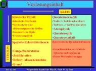 Ausgewählte Kapitel der Physik, Prof. W. de Boer