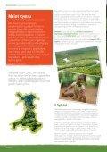 Maint Cymru - Page 4