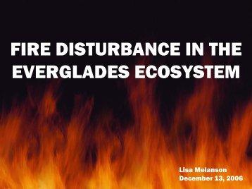 FIRE DISTURBANCE IN THE EVERGLADES ECOSYSTEM