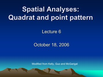 Spatial Analyses Quadrat and point pattern
