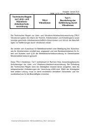 Technische Regel zur Lärm- und Vibrations-Arbeitsschutzverordnung