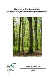 Naturerbe Buchenwälder Situationsanalyse und ...
