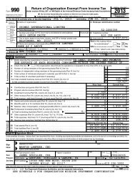 Form 990 - Chimes International Limited