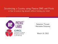 Scrutinizing a Country using Passive DNS and Picviz