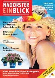 Marcus Buggel Endless-Summer in Nadorst - Nadorster Einblick