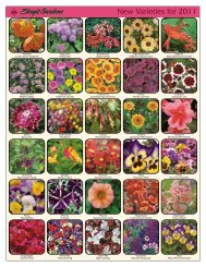 New Varieties for 2011