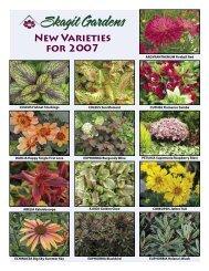 New Varieties for 2007
