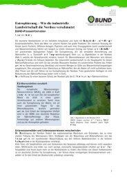 Eutrophierung – Wie die industrielle Landwirtschaft die Nordsee ...
