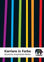 Karriere in Farbe - Deutsche Amphibolin Werke -  Caparol