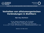 Verhalten von siziliumorganischen Verbindungen in Biofiltern - DGAW