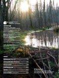 Vogelschutz-Sonderheft Rainer Wald - Der Rainer Wald - Seite 2