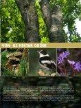 Vogelschutz-Sonderheft Rainer Wald - Der Rainer Wald - Seite 5