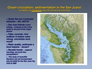 Ocean circulation sedimentation in the San Juans'