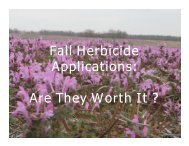 Fall Herbicide id Applications Are They Worth It ?