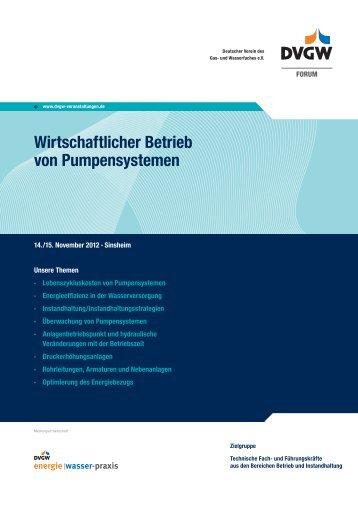 Wirtschaftlicher Betrieb von Pumpensystemen - DVGW - Deutscher ...