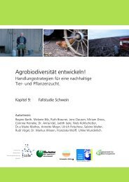 Fallstudie Schwein - Agrobiodiversität entwickeln