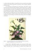 ORIGENS DA VIDA - Page 3