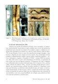 ORIGENS DA VIDA - Page 7