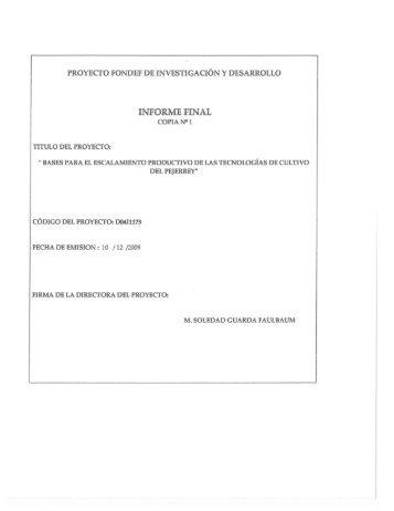 PROYECTO FONDEF DE INVESTIGACIÓN Y ... - dspace.conicyt.cl