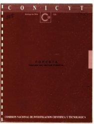 COMISION NACIONAL DE INVESTIGACION CIENTIFICA Y TECNOLOGICA