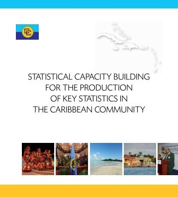 Regional Statistics-Statistical Capacity Building for the Production of ...