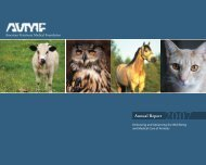 2007 Annual Report - American Veterinary Medical Foundation