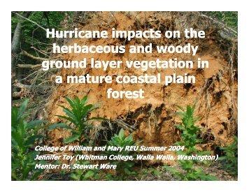 Hurricane impacts on the herbaceous and woody ... - Media.wm.edu