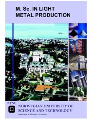 M Sc IN LIGHT METAL PRODUCTION