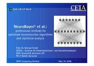 NeuroBayes® et al.: - Desy