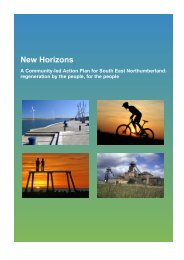 I Background to the New Horizons Action Plan