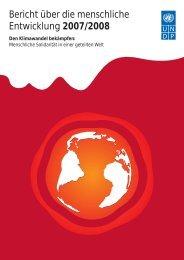Bericht über die menschliche Entwicklung 2007/2008