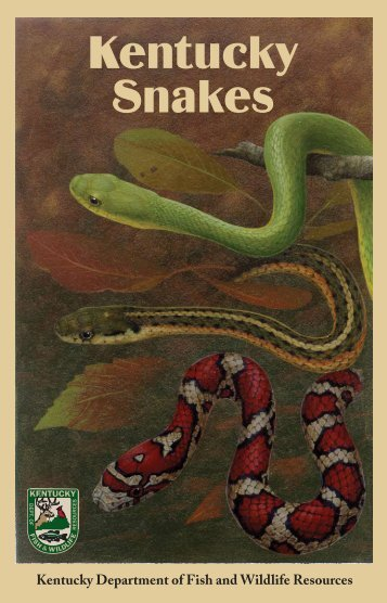 Kentucky Snakes