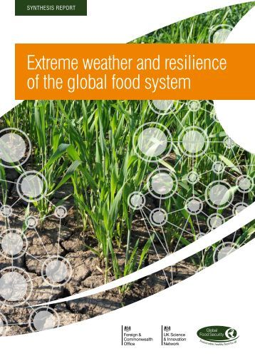 Extreme weather and resilience of the global food system