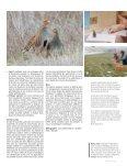 HOTSPOT - Page 7