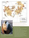 Sage Grouse - Page 2