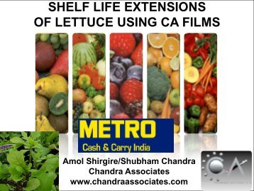 OF LETTUCE USING CA FILMS