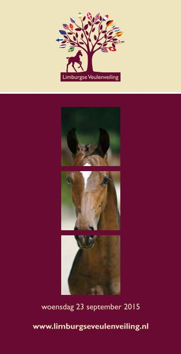 Catalogue Limburg Foal Auction 2015.pdf