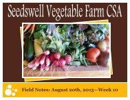 Field Notes August 20th 2015—Week 10