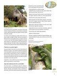 Los Tuxtlas Reserva de la Biosfera - Page 5