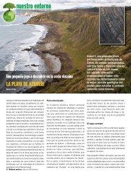 La Playa de Azkorri - Bizkaia 21