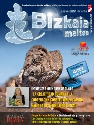 www.bizkaia21.net